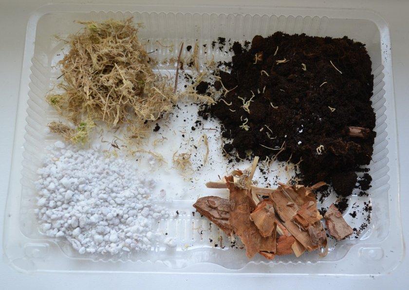 Почва для антуриумов