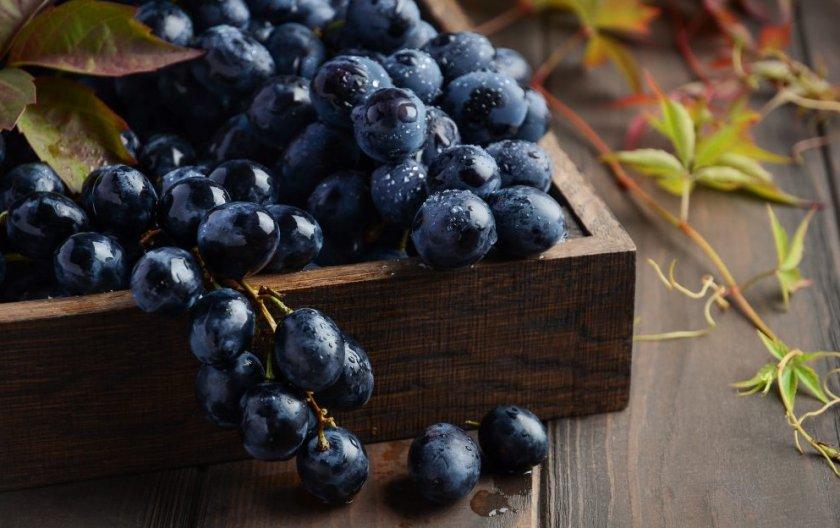 Сорта чёрного винограда
