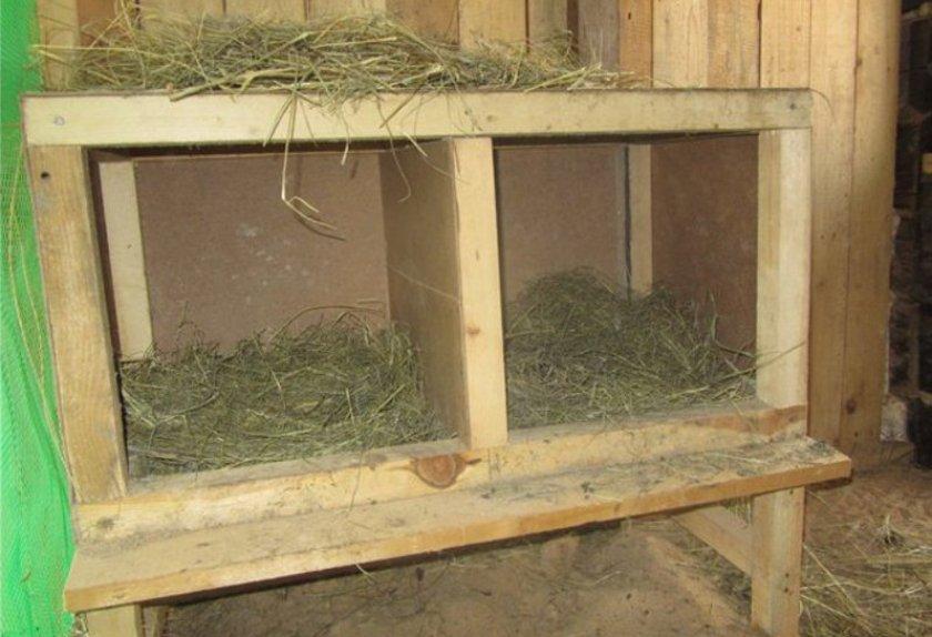 Гнездо для индейки