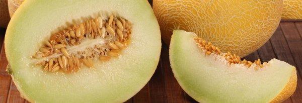 Семена дыни польза и вред для мужчин