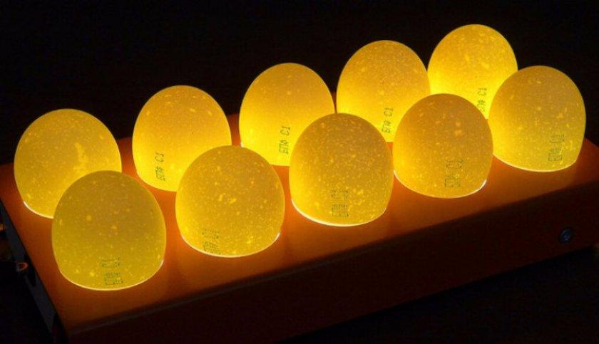 Процедура овоскопии яйца