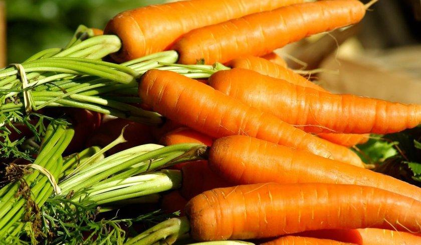 Полезные свойства употребления моркови