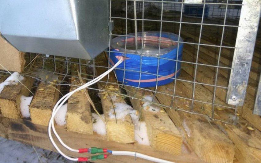 Электропоилка для кроликов