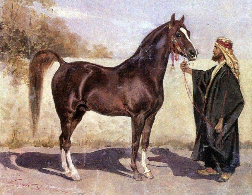 Развитие отношений человека с лошадью и особенности приручени