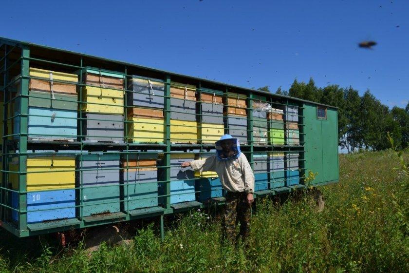 Улья для промышленного пчеловодства
