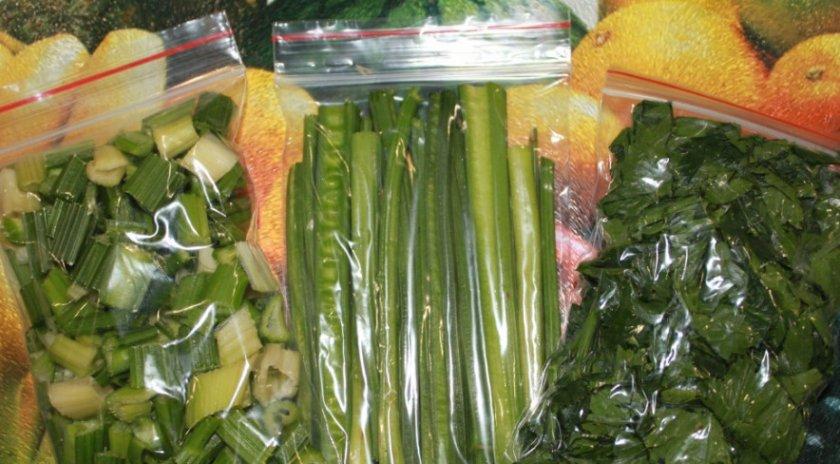 Как выращивать сельдерей в домашних условиях?