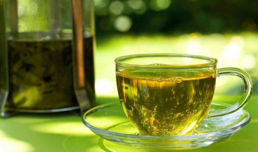 Чай с петрушки при беременности