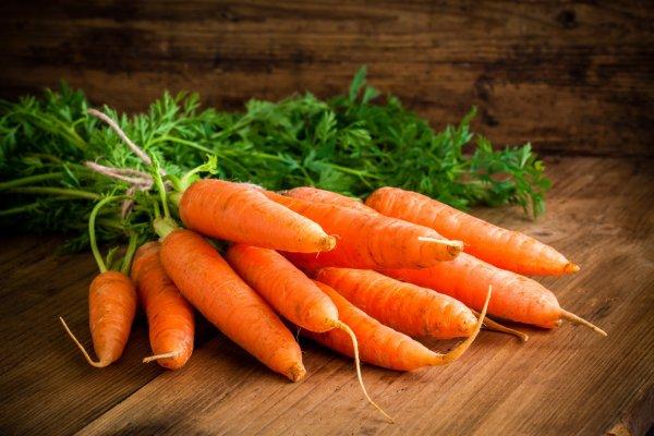 Доклад-сообщение Морковь (описание для детей)