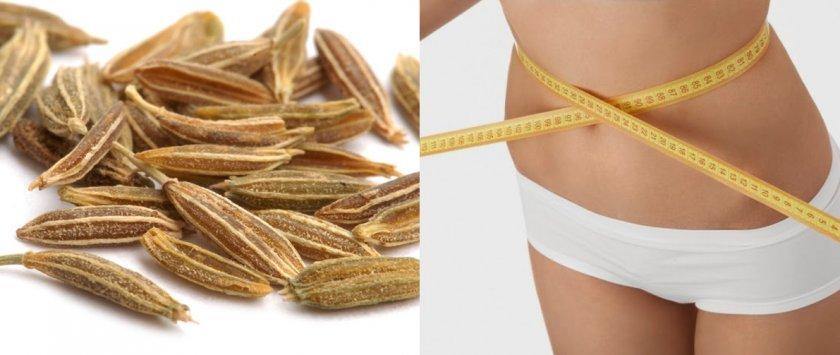 Польза семян тмина для похудения
