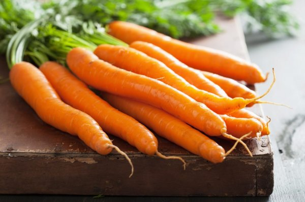 Морковь: польза и вред для организма, сколько нужно съесть