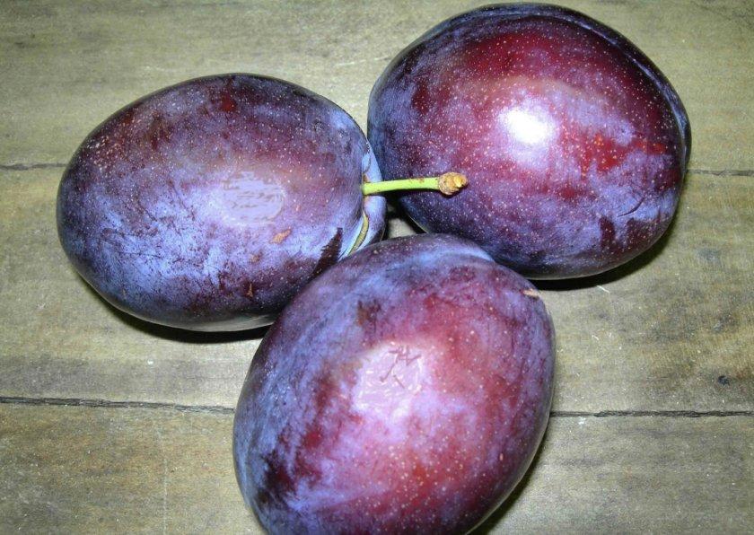 Созревшие фрукты сливы Президент