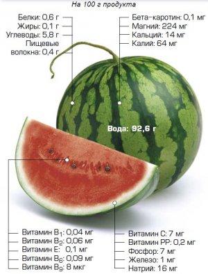 Химический и витаминный состав