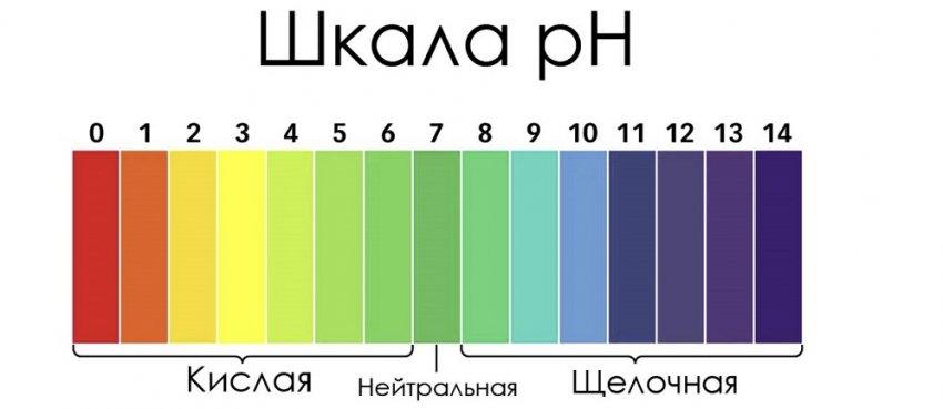 Шкала измерения