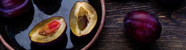 Как вырастить (посадить) сливу из косточки: в домашних условиях, будет ли плодоносить, на даче