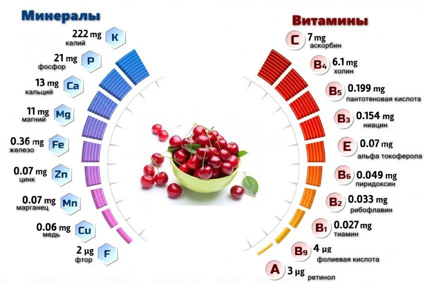 Химический состав вишни