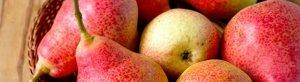 Полезны ли сушеные яблоки для похудения