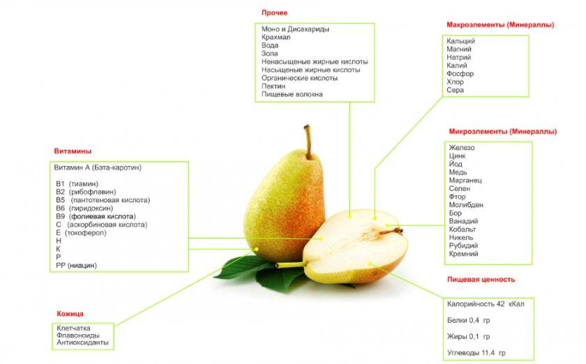 Химический и витаминный состав груши