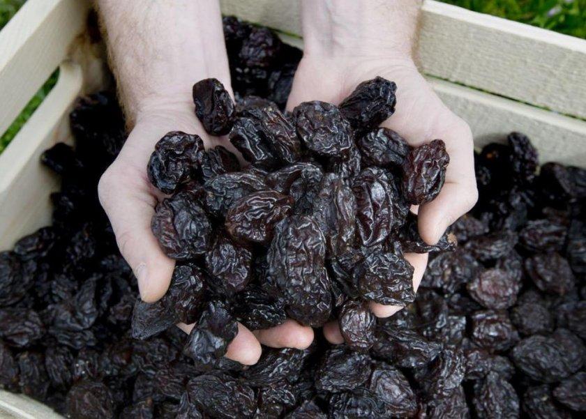 Выбор качественного чернослива