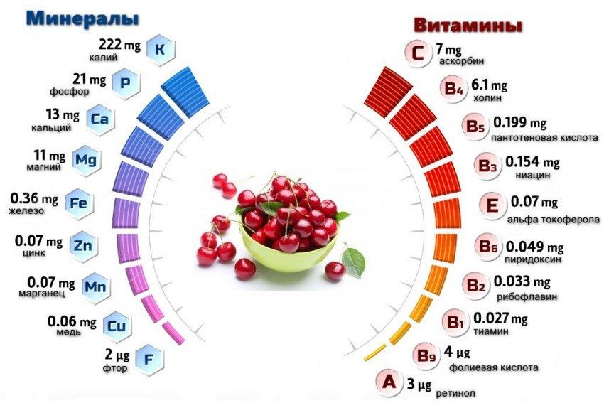 Витаминно-минеральный состав вишни