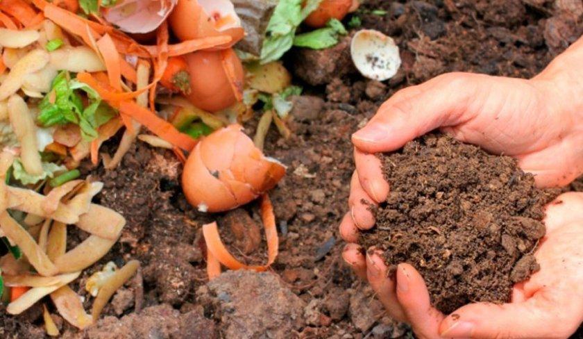 Органическое удобрение - компост