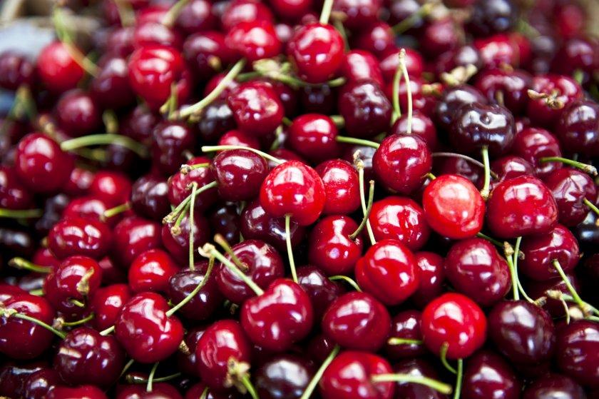 Какие вишни покупать