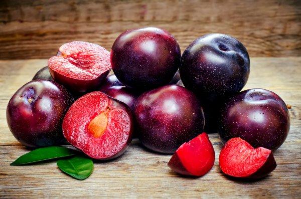 Слива: описание и характеристика, ягода или фрукт, тип плода, к какому семейству относится, фото