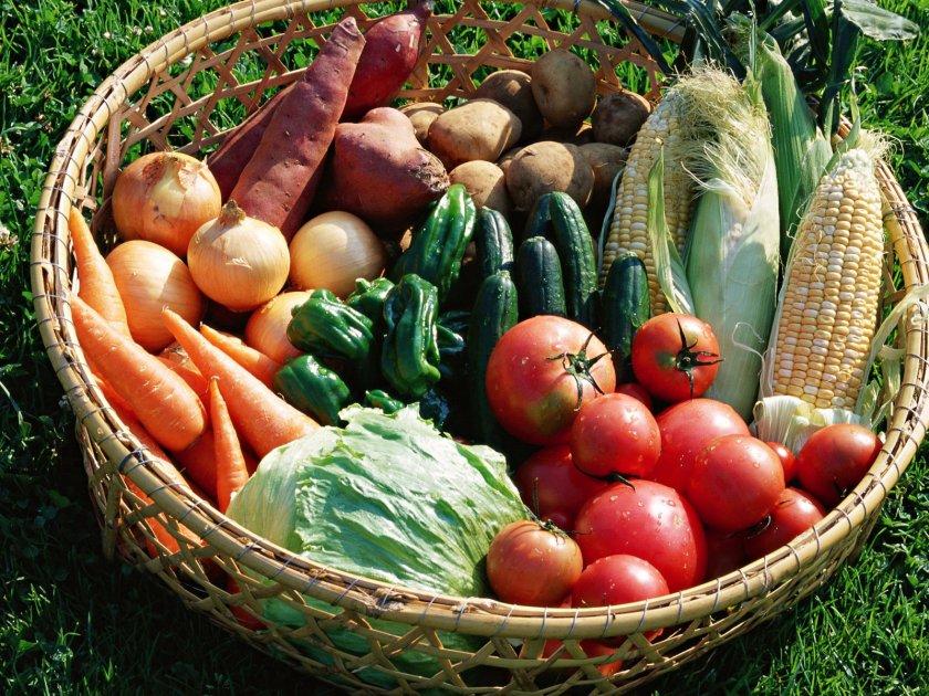 Урожай огородных культур