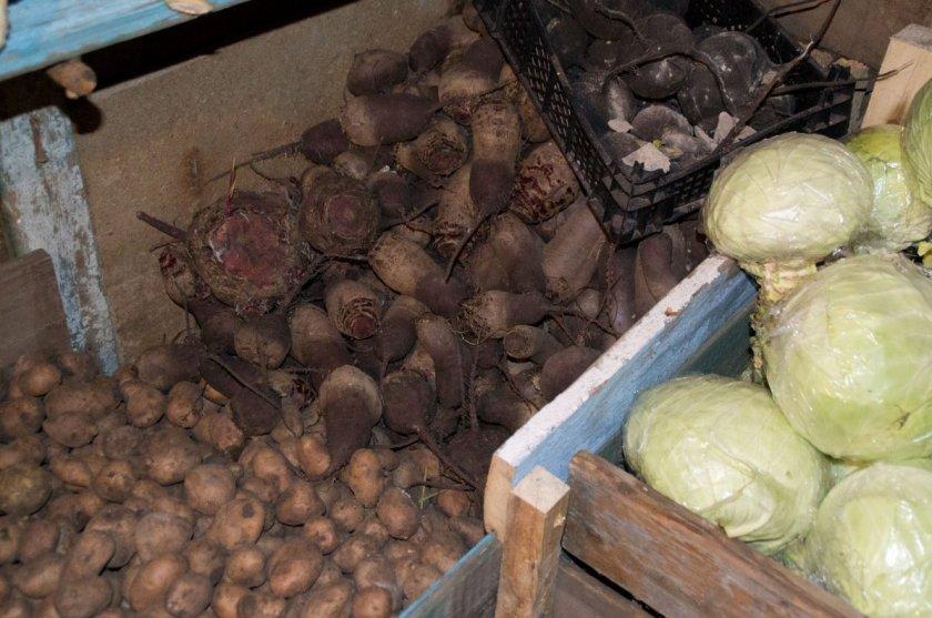 Закладка урожая на хранение