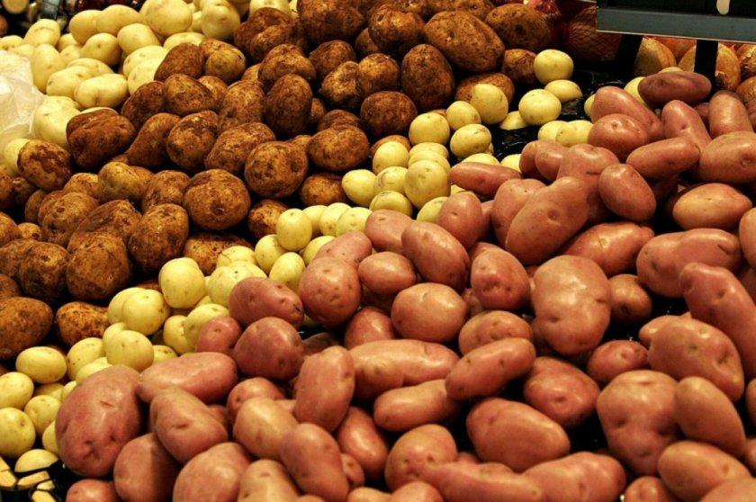 Украинские аграрии увеличивают посевные площади под картофелем