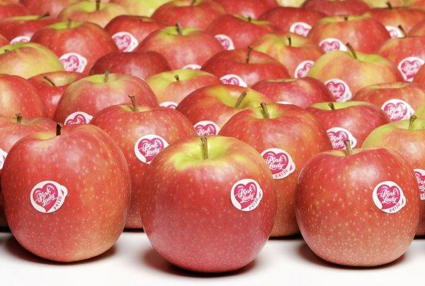 Сорт яблок Пинк Леди: ботаническое описание и условия для выращивания