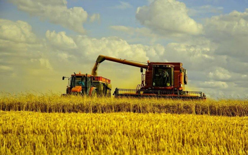 В США прогнозируют снижение уровня фермерских доходов