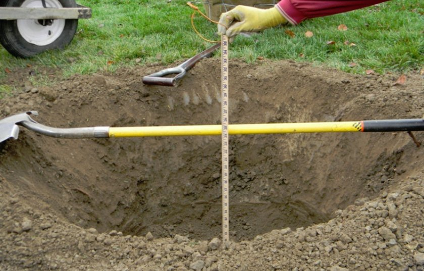 Подготовка ямы для посадки