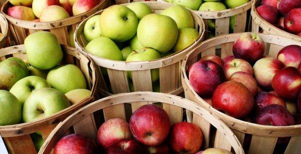 Сколько калорий в яблоке красном 100