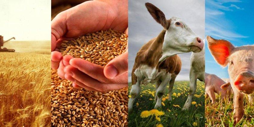 В США планируют сократить расходы на сельское хозяйство
