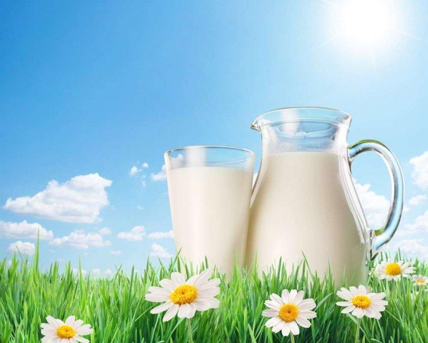 Трансграничный молочный гигант снизит закупочную цену на молоко