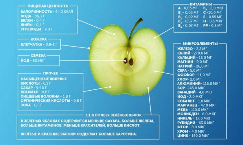 Химический состав яблок