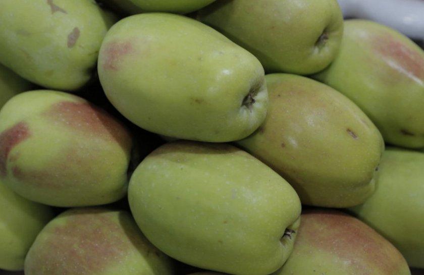 Яблоки Синап