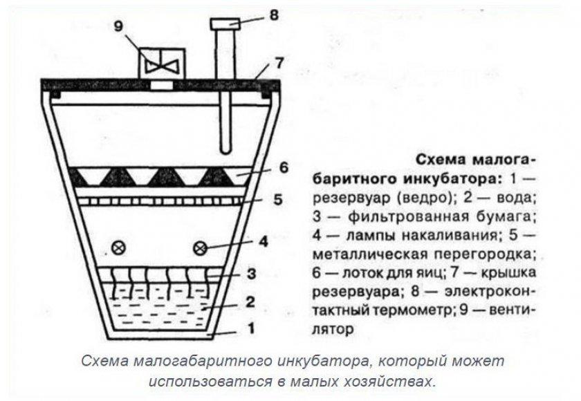 Схема инкубатора из пластикового ведра