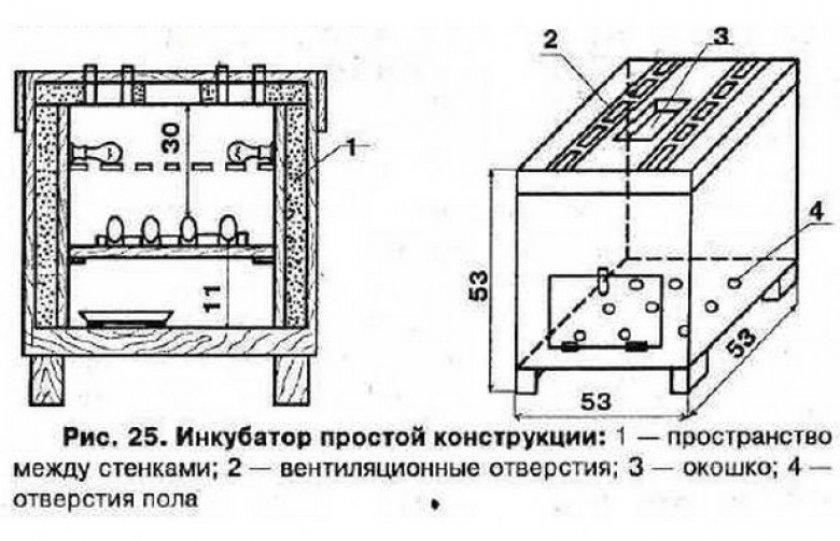 Чертёж инкубатора из фанеры и каркаса