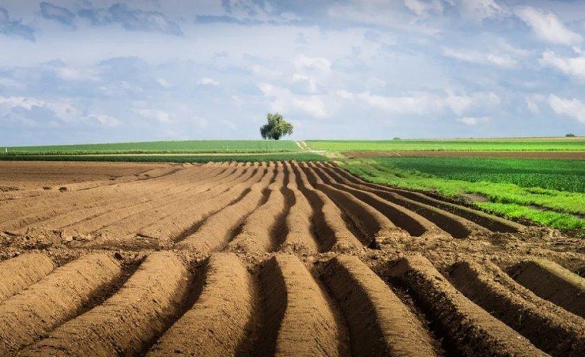 В США широкая коалиция призывает Конгресс защитить финансирование фермерских программ