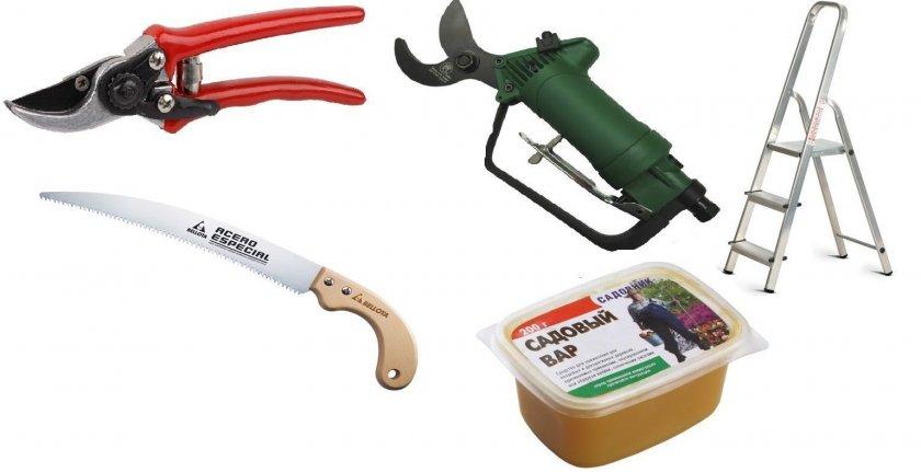 Инструменты для обрезки яблони