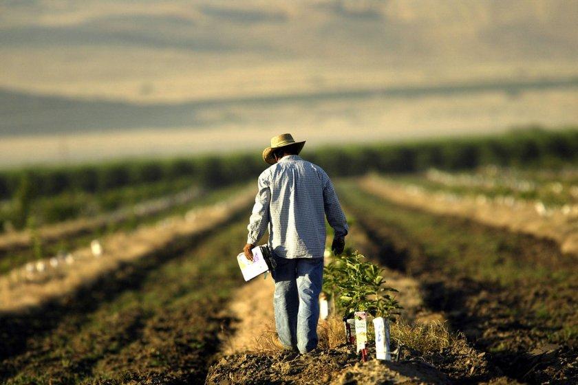 Американские фермеры противостоят кризису психического здоровья