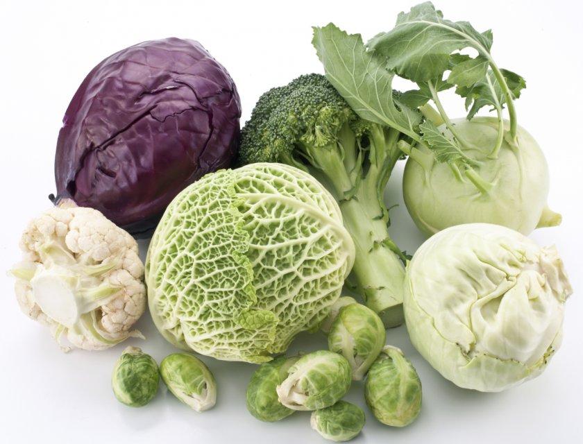 Различные виды капусты