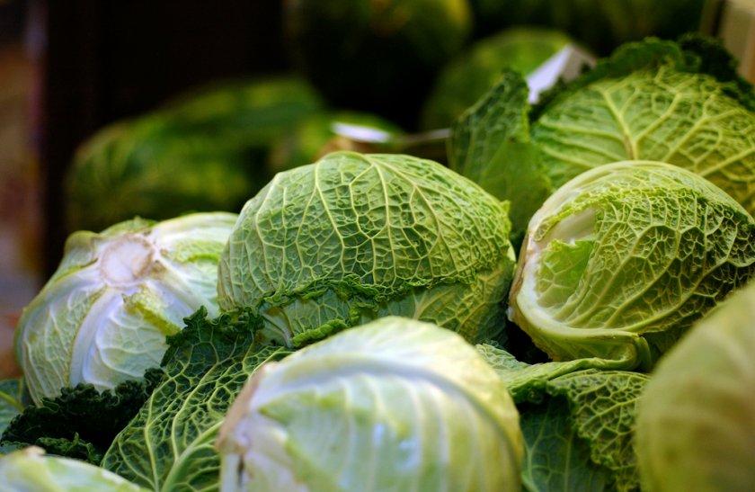 Как выбрать свежую капусту