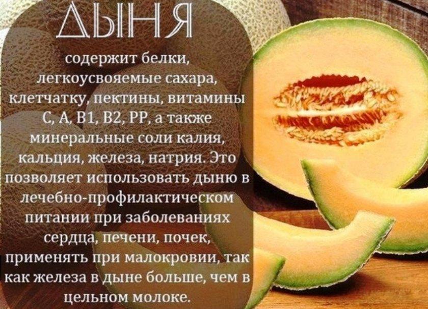 дыня и печень