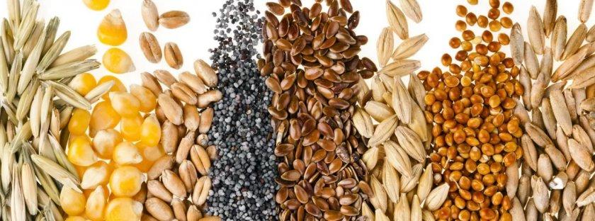 Китай не ограничивает импорт канадской пшеницы, гороха и льна