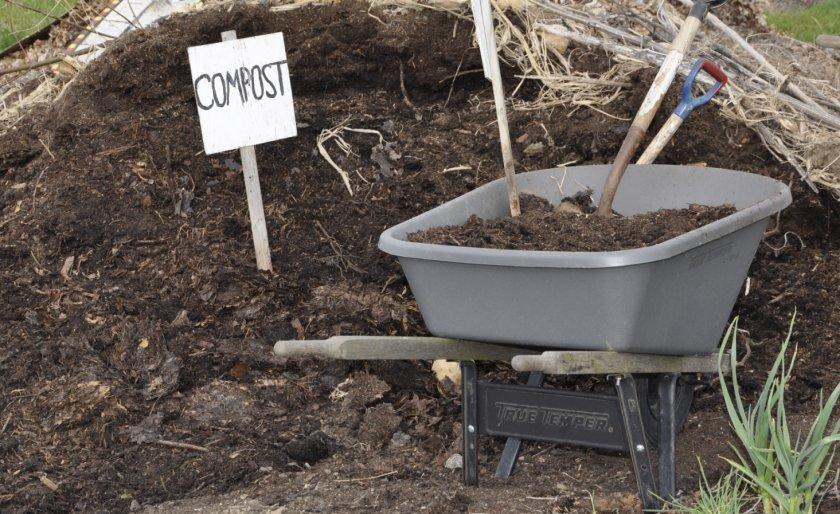 Компост для удобрения почвы