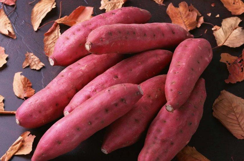 Украинцы всё чаще отказываются от картофеля в пользу батата