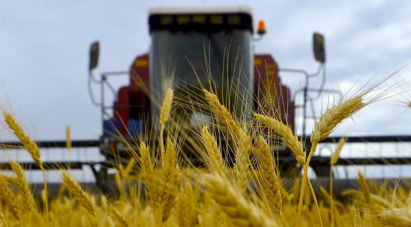 Украина установила сразу несколько исторических рекордов урожайности в 2018 году