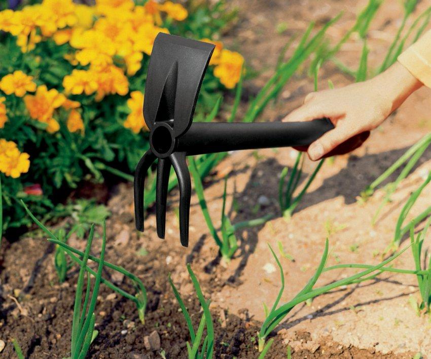 Рыхление почвы и прополка лука
